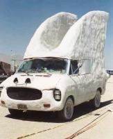 wingscar